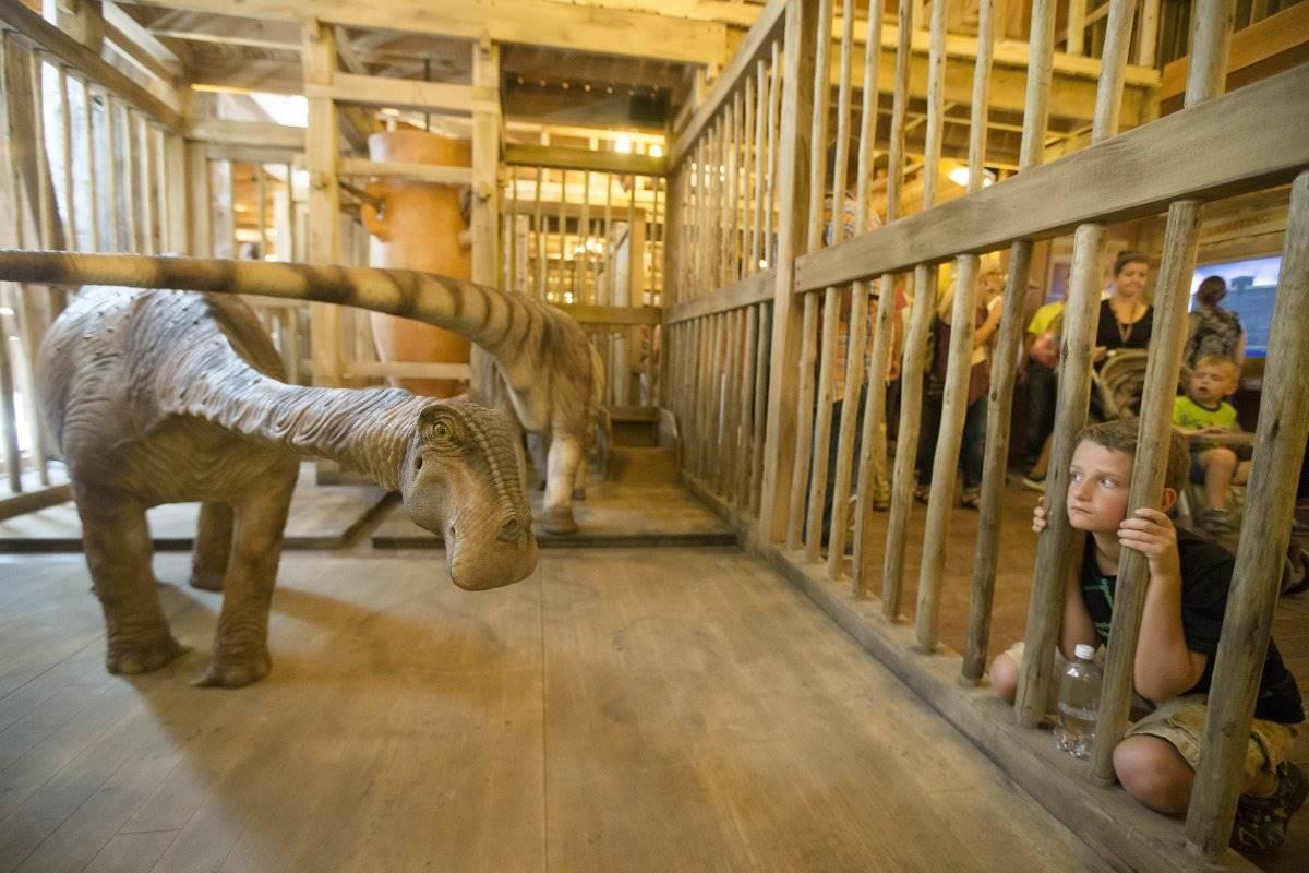Nuovo parco a tema negli Usa con l'arca di Noè a grandezza naturale