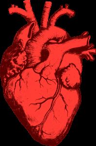 Umbria: le farmacie Federfarma per lo screening cardiovascolare