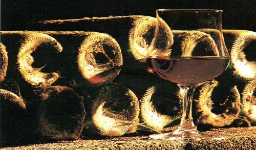 La degustazione: Degustare i vini rossi invecchiati