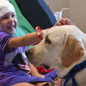 Al via La Pet Therapy nelle case di cura ed ospedali lombardi