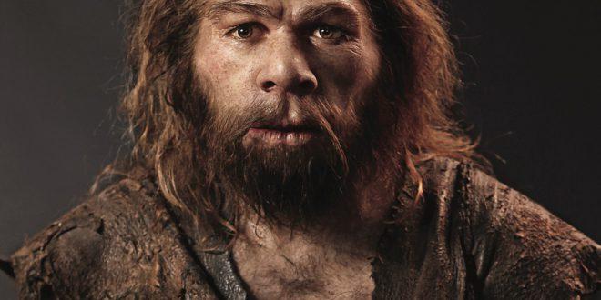 "Neanderthal: ""eleganti signori"" o brutali cannibali?"