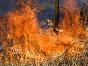 Aidone: operaio forestale morto dopo servizio anti incendio, esposto della figlia