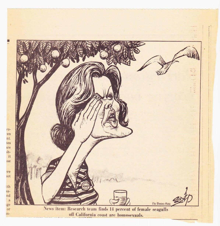 Nel 1972 coppie di gabbiani lesbiche agitarono la politica USA