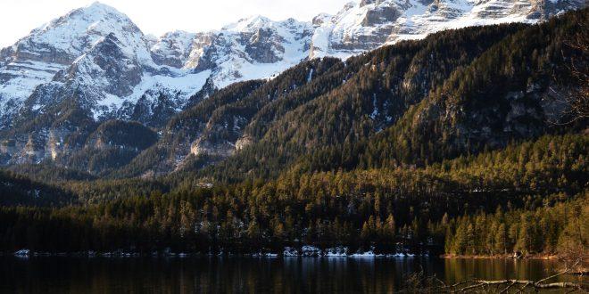 Boschi italiani: le foreste montane