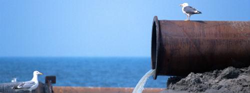 Scoperti nuovi microinquinanti delle acque
