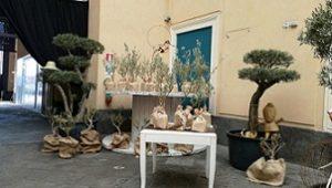 Catania: A Land la Prima Primavera