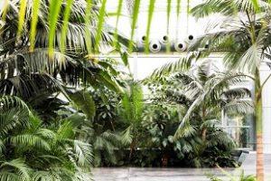 Giarre: Inaugurata la I edizione della biennale Radicepura Garden Festival