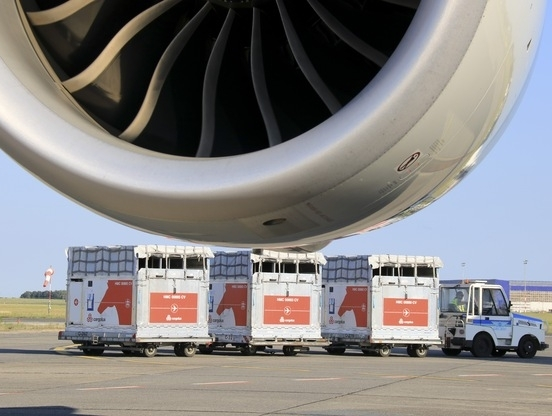 Flying horses spotted at Budapest Airport | Air Cargo