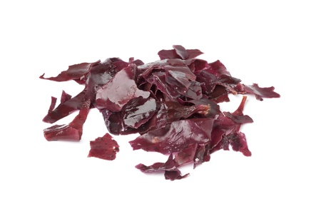 Alghe Dulse: Proprietà e Benefici