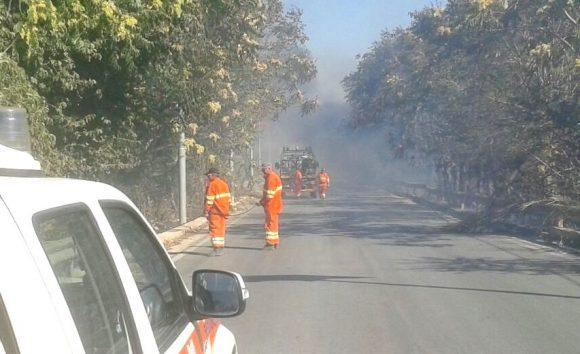 Incendio a Castelvetrano, in fiamme alberi ed un camion