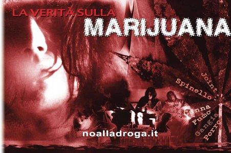 Lograto informa sulle droghe