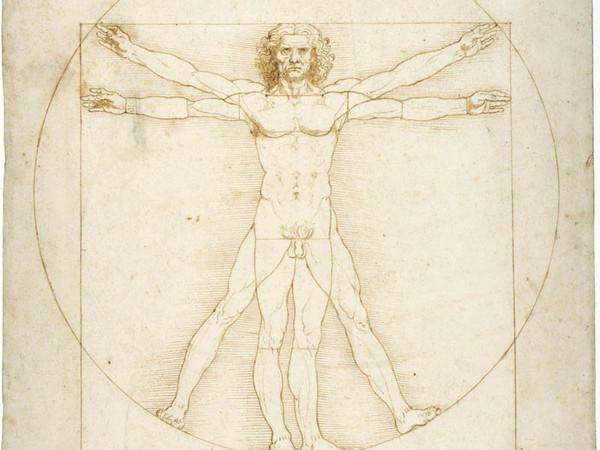 Scoperto un nuovo organo nel corpo umano
