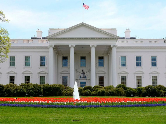 Terrorismo alla Casa Bianca?
