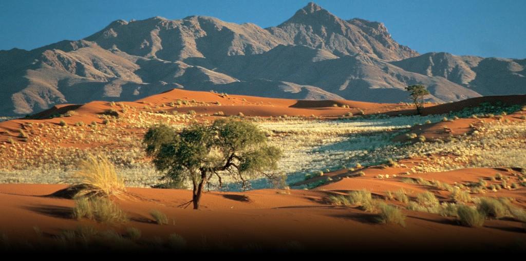 21 marzo 1990: La Namibia ottiene l'indipendenza dopo anni di guerra