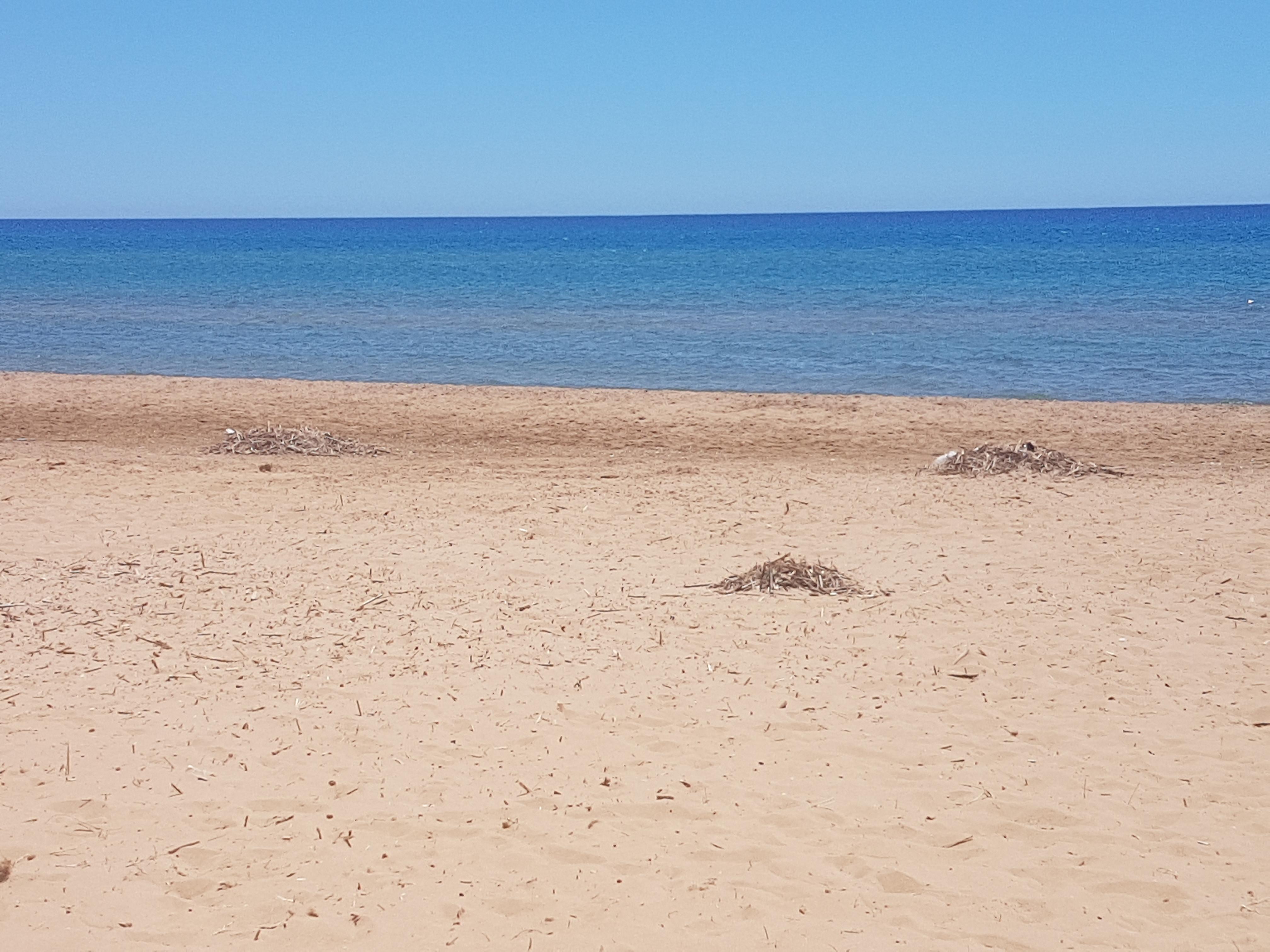 Il 16 luglio pulizia delle spiagge di Triscina e Marinella
