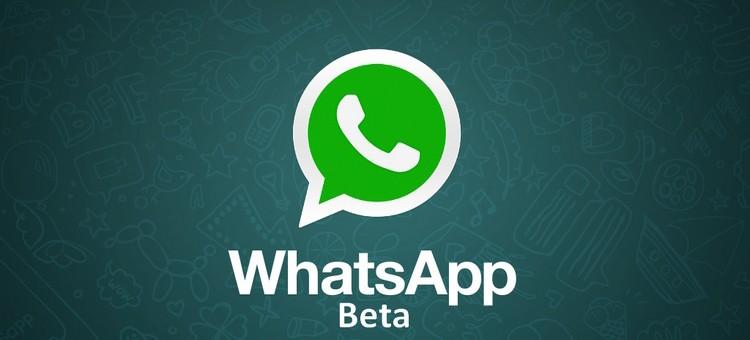 Whatsapp Beta - Nuovo aggiornamento per Windows 10 Mobile