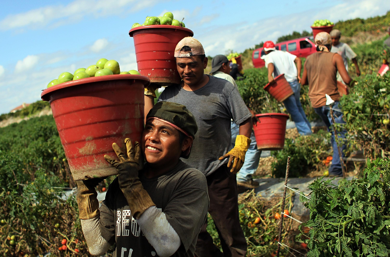 Minniti: Lavori utili svolti gratis dai migranti