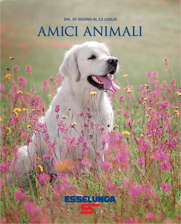 Amici animali, un nuovo volantino Esselunga dedicato agli animali domestici!
