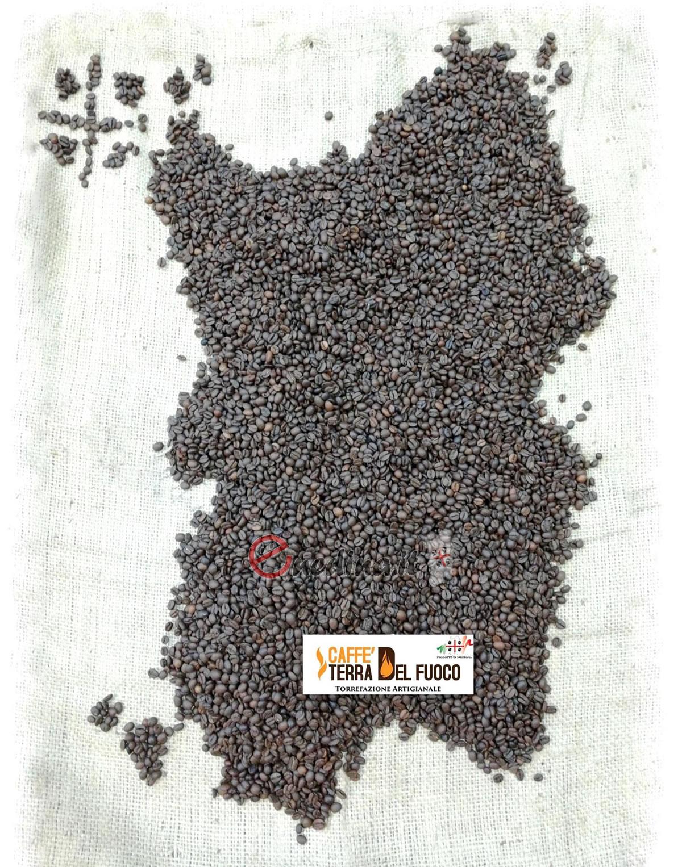 Caffè Terra del Fuoco, il caffè della terra dei nuraghi