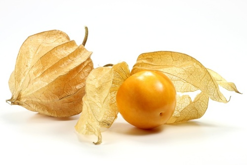 I consigli della naturopata: l'alchechengi, bizzarro frutto esotico
